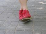 walk-498070_1920