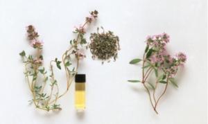 essential-bottles-w-herbs